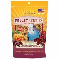 Pellet berries parakeet
