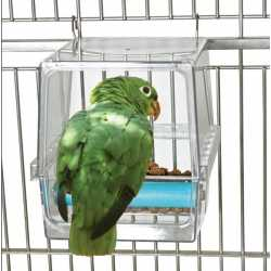 Parrot cafe seed corral large