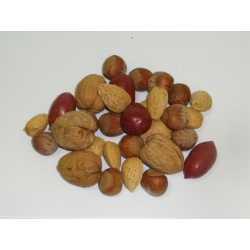 Mélange de 3 noix (vrac)