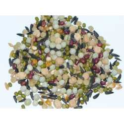 Large parrot sprouting mix